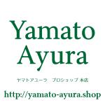 ヤマトアユーラプロショップ本店にて業務用水垢取り洗剤テラクリーナーヤマトの販売を開始しました
